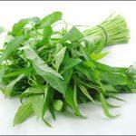 空心菜の栄養と効能は?炒めたりおひたしでおいしくいただく万能野菜!
