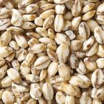 もち麦効果は便秘やダイエットにあり?もち麦ごはんやもち麦みそレシピもご紹介!