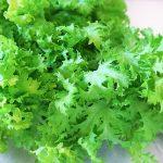 わさび菜の食べ方は?栄養は?茎は茹でる?お浸しや漬物、天ぷらがおいしい!