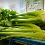 セロリの保存方法、冷蔵庫、冷凍庫で期間は?葉や茎は別?カットしたら?保存食おすすめは?