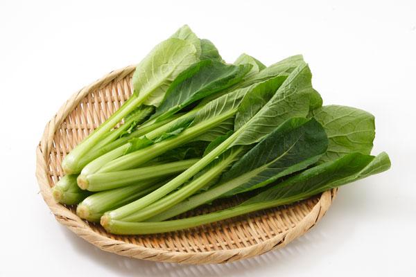 小松菜は冷凍保存が便利!冷蔵や常温も立てて保存がおすすめ!