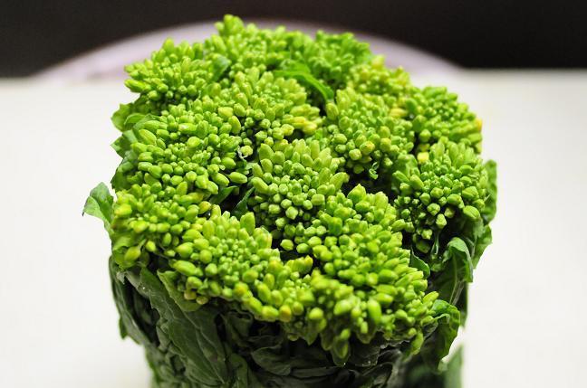 菜の花のゆで方のコツや保存方法、レンジもOK?冷凍保存や苦みを抑えるには?